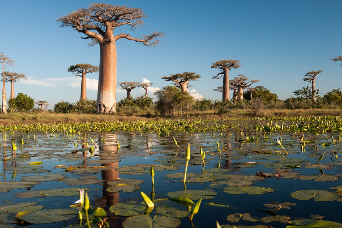Madagascar Est & Ovest