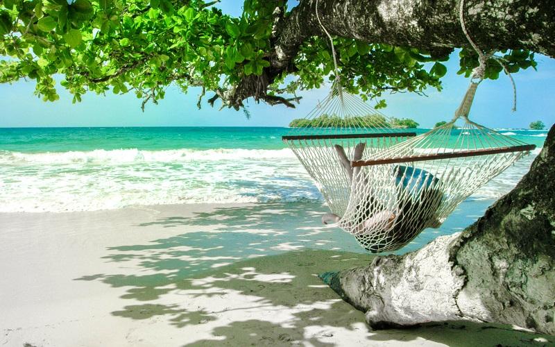 Image result for giamaica 800 x 500