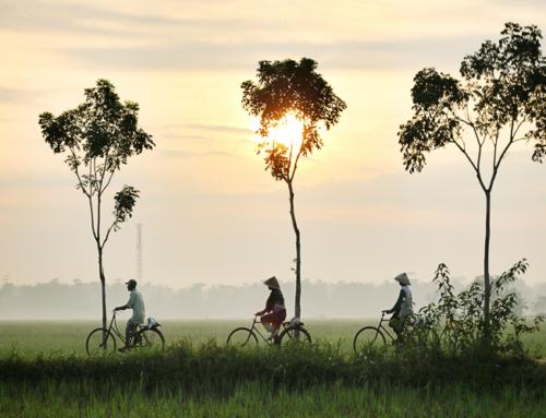 VIETNAM POPOLI E TRADIZIONI