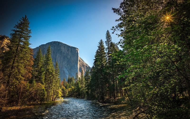 Risultati immagini per sequoia park 800x500