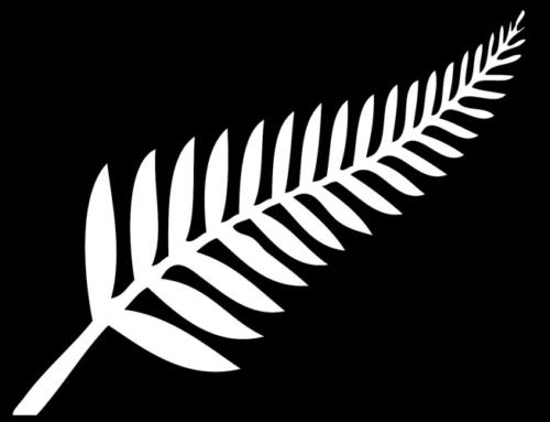 GEYSERLAND BEST OF NZ5 Giorni / 4 Notti