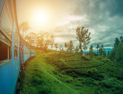 Essence Sri Lanka & Maldive