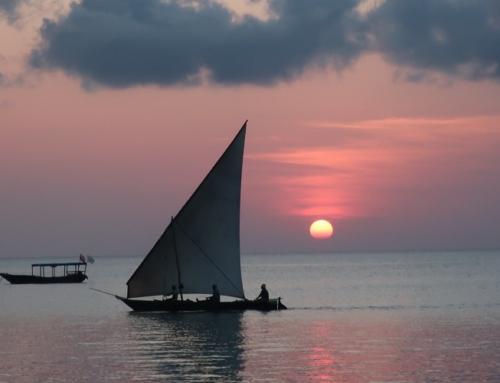 BOTSWANA ADVENTURE & Zanzibar13 notti