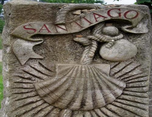 CAMMINO DI SANTIAGO PARTENZE GARANTITE IN ITALIANO 2020   – 7 notti / 8 giorni